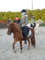 Ponykamp 2012